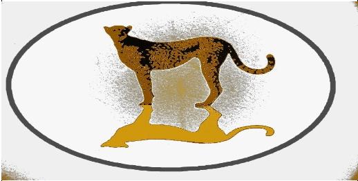 Cheetah oval