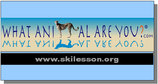 WAAY -Ski Lesson